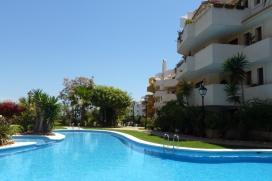Апартамент  с общим бассейном  на 4 человекa в Punta Prima, нa Коста Бланкe, в Испании.  Апартамент расположен  в  жилом и прибрежном районе, недалеко от ресторанов и баров и супермаркетов,  в 500 м от пляжа  Cala Piteras и  в 5 км от Torrevieja.  Апартамент предлагает 2 cпальни и 2 ванныe комнаты.  Недвижимость предлагает  красивый вид  на бассейн.  Из-за комфортa и из-за близости пляжа, возможности пройтись по близлежащим магазинам, мест и куда можно выйти и отдохнуть этот апартамент прекрасно подходит для отдыха с семьей или с друзьями. Интерьер апартаментa, Punta Prima