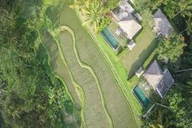 Schöne und romantische Villa  mit privatem Pool in Ubud, auf Bali, Indonesien für 4 Personen, Ubud